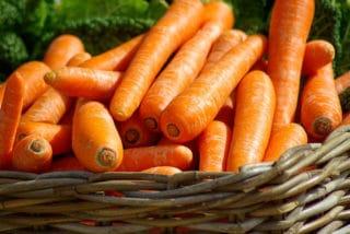 cesto di carote