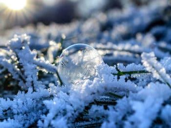 neve e gelate